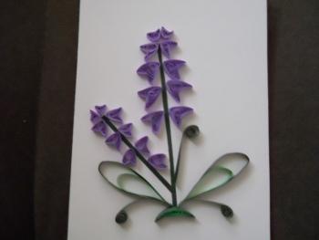 lavendarflower